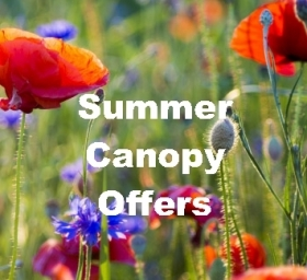 Summer Canopy Offers